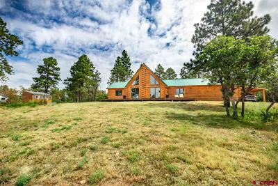 Pagosa Springs Single Family Home For Sale: 3551 Ranchland Drive