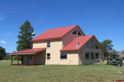 Pagosa Springs Single Family Home For Sale: 80 Mallard Place