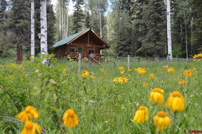 Durango Single Family Home For Sale: 41 Vista View Drive