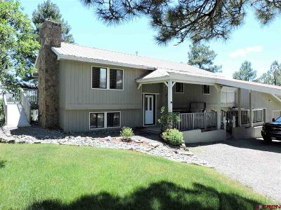 Pagosa Springs Single Family Home For Sale: 442 Dutton Drive