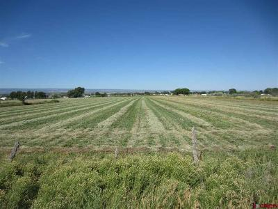 Montrose Residential Lots & Land For Sale: 6530 Road