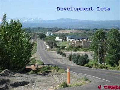 Montrose Residential Lots & Land For Sale: 2 6300 Road