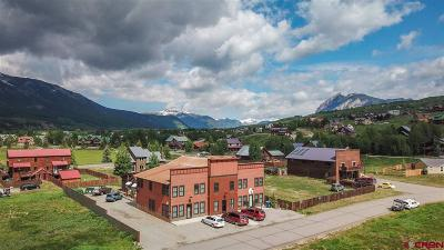 Crested Butte Condo/Townhouse For Sale: 241 Gillaspey Avenue #R-2