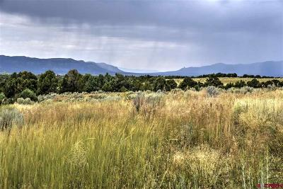 Mancos Residential Lots & Land For Sale: Road 34.5