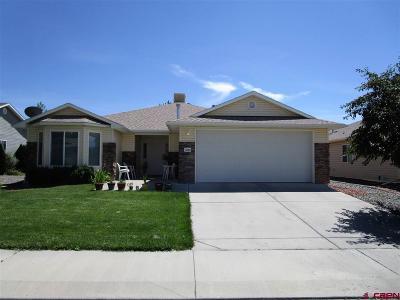 Montrose Single Family Home For Sale: 1244 Animas Street
