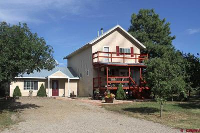 Mancos Single Family Home For Sale: 14028 Road 36.7