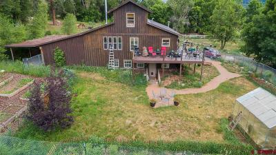 Ouray Single Family Home For Sale: 18474 Hwy 550