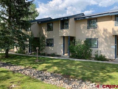 Pagosa Springs Condo/Townhouse For Sale: 199 Davis Cup #4065