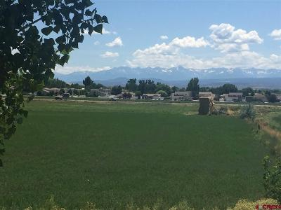 Montrose Residential Lots & Land For Sale: Hwy 50 Road