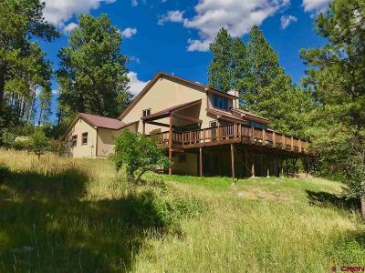 Durango Single Family Home For Sale: 1057 Los Ranchitos Drive