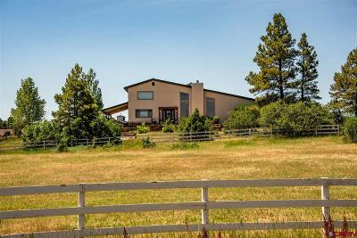 Pagosa Springs Single Family Home For Sale: 489 Capricho Circle