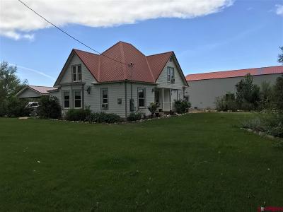 Olathe Single Family Home For Sale: 5611 5825 Road