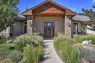 Durango Single Family Home UC/Contingent/Call LB: 17 Championship Circle