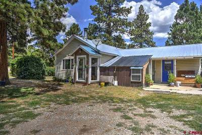 Hesperus Single Family Home For Sale: 20524 St Hwy 140