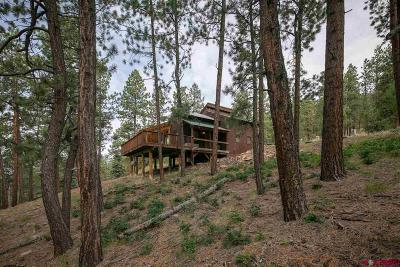 La Plata County Single Family Home For Sale: 1379 Cr 245