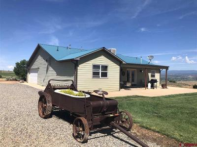 Crawford CO Single Family Home For Sale: $725,000