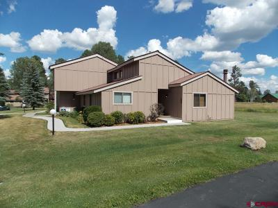 Pagosa Springs Condo/Townhouse For Sale: 145 Davis Cup Drive #4033