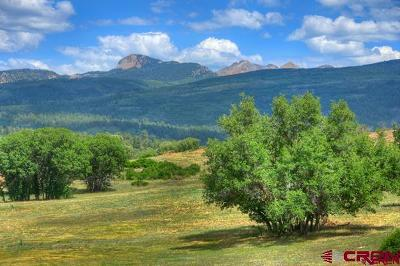 Mancos Residential Lots & Land For Sale: 8350 Road 46
