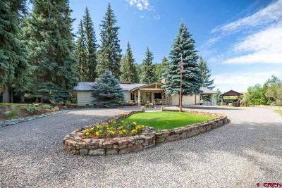 Pagosa Springs Single Family Home For Sale: 600 Alamosa Place