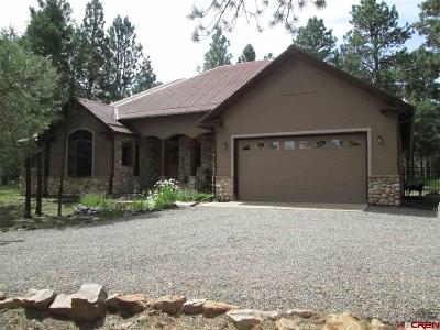 Ridgway Single Family Home For Sale: 173 S Badger Trail