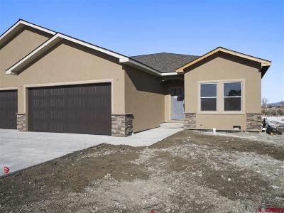 Montrose Condo/Townhouse For Sale: 2333 Stone Bridge Drive