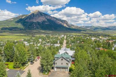 Crested Butte CO Single Family Home For Sale: $1,998,000