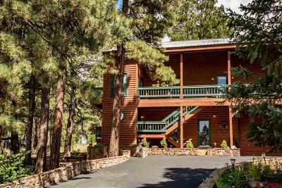 Pagosa Springs Single Family Home For Sale: 48 N Driver Court