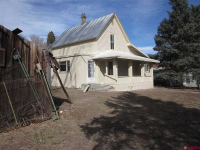 Hotchkiss, Crawford, Paonia Single Family Home For Sale: 210 W Main Street