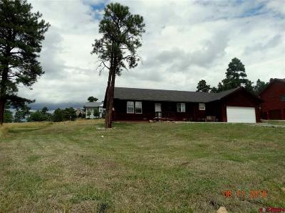 Pagosa Springs Single Family Home UC/Contingent/Call LB: 16 Putter Court