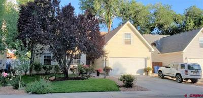Montrose Single Family Home For Sale: 1424 Colonial Drive