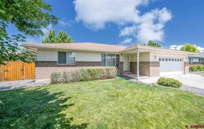 Montrose Single Family Home For Sale: 2039 James Street