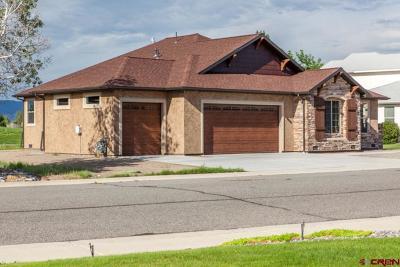 Montrose Single Family Home For Sale: 466 Cobble Drive