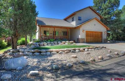 Durango Single Family Home For Sale: 208 Oak Drive