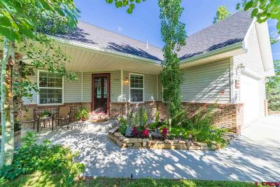 Montrose Single Family Home For Sale: 3208 Silver Fox Drive