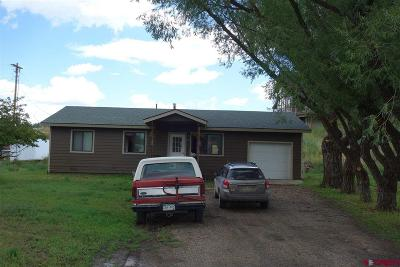 Pagosa Springs Single Family Home UC/Contingent/Call LB: 310 S 7th Street