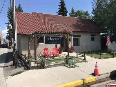 Gunnison County Commercial For Sale: 124 E Virginia