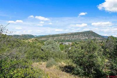 Durango Residential Lots & Land For Sale: 1540 Cr 240