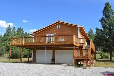 La Plata County Single Family Home For Sale: 703 Cr 224