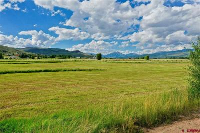 Gunnison County Residential Lots & Land For Sale: Kiowa Lane
