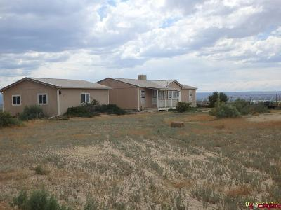 Montrose County Mobile/Manufactured For Sale: 2041 Lane Street