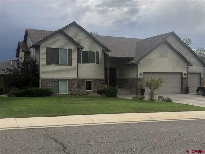 Montrose Single Family Home For Sale: 2224 Freedom Way