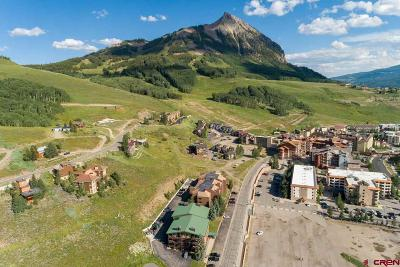 Mt. Crested Butte CO Condo/Townhouse For Sale: $549,000
