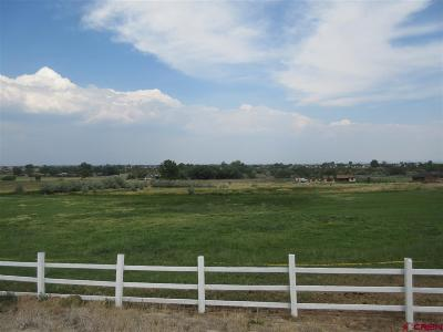 Cortez Residential Lots & Land For Sale: 13916 Road 25.1