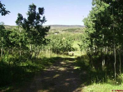 Residential Lots & Land For Sale: Hubbard Creek Road