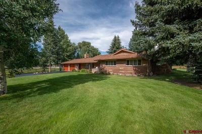 Gunnison Single Family Home For Sale: 2906 State Highway 135
