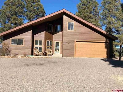 Pagosa Springs Single Family Home For Sale: 393 Saddleback Drive