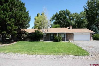 Montrose Single Family Home For Sale: 62197 Jig Road