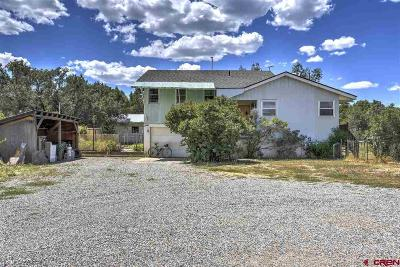 Durango Single Family Home For Sale: 28982 Us Hwy 160