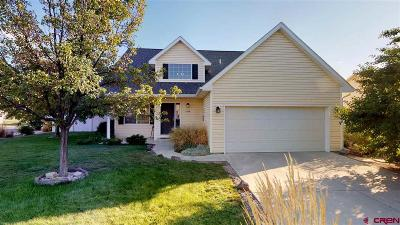 Montrose Single Family Home For Sale: 2238 American Way
