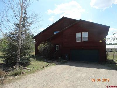 Pagosa Springs Single Family Home For Sale: 25 Beaver Circle